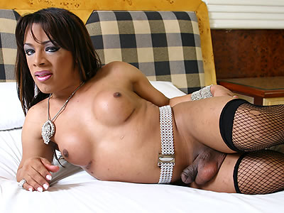 Shemale allanah starr movie big boob adventure